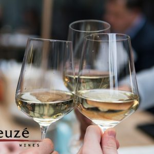 Wijnproeverij en 6 flessen wijn naar keuze van Bleuzé Wines!